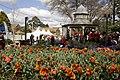 Bowral NSW 2576, Australia - panoramio (23).jpg