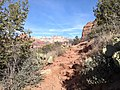 Boynton Canyon Trail, Sedona, Arizona - panoramio (29).jpg