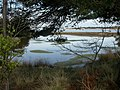 Bramble Bush Bay, pond - geograph.org.uk - 1255815.jpg