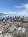 Bridger Bay Antelope Island Utah.jpg