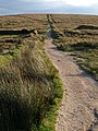Bridleway south of Nun's Cross - geograph.org.uk - 1513530.jpg