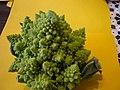 Broccoli DSCN4340.jpg