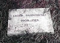 Bronowski-marker.jpg