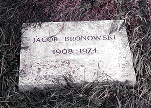 Jacob Bronowski - Jacob Bronowski's grave in Highgate Cemetery, London.