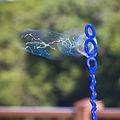 Bubbles (2610807551).jpg