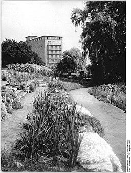 Bundesarchiv Bild 183-94734-0002, Rostock, Botanischer Garten, Haus der Hochseefischer