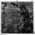 Bundesarchiv Bild 196-03059, Wugarten.jpg