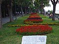 Burgas - panoramio (40).jpg