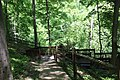 ButterMilk Falls Home of Mr. Rodgers - panoramio (39).jpg