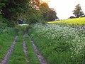 Byway, Clatford Oakcuts - geograph.org.uk - 809860.jpg