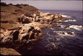 CALIFORNIA-MONTEREY BAY - NARA - 543291.tif