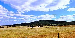 Sierra de San Pedro - One of the peaks of the San Pedro Range rising above the plateau.