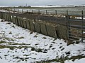 Caithness flagstone fencing - geograph.org.uk - 1724421.jpg