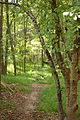 Caledon State Park (7987004359).jpg