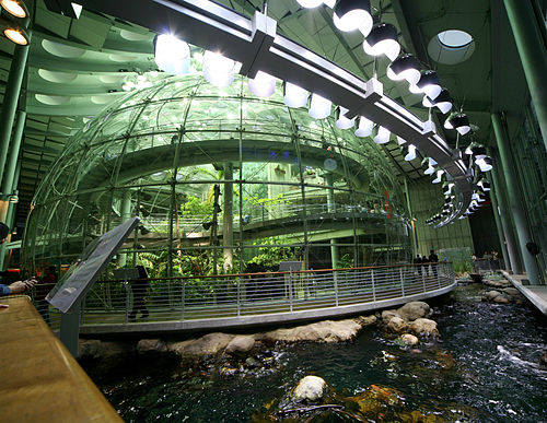 Thumbnail from California Academy of Sciences
