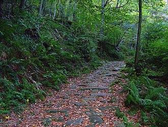Bárcena de Pie de Concha - Roman road of Bárcena de Pié de Concha.