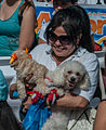 Caminata por los perros y animales Maracaibo 2012 (12).jpg