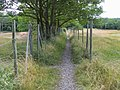 Camp Road Footpath - geograph.org.uk - 879481.jpg