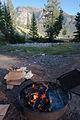 Campfire (3952556869).jpg