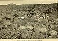 Campfires on desert and lava (1908) (14586588758).jpg