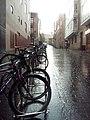 Canton Santa Maria, subida a Cuchilleria y bicicletas.jpg