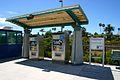 Carlsbad Poinsettia NCTD station19.jpg