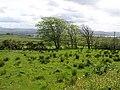Carrowmore Townland - geograph.org.uk - 1330785.jpg