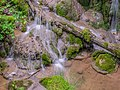 Cascade de Saunhac 14.jpg