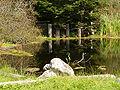 Caspar mill ruins 2.jpg