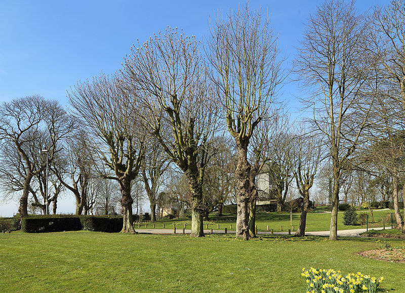 File cassel jardin public wikimedia commons for Jardin public 78