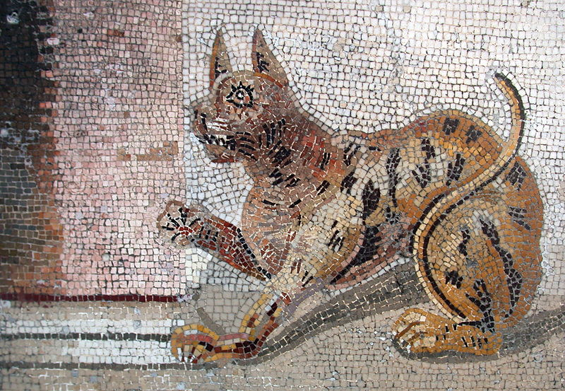Mosaique de chats à Pompéi, au sud de Naples. Photo de Massimo Finizio.