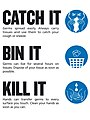 Catch it, Bin it, Kill it poster (cropped).jpg