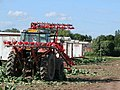 Cauliflower harvester, Weston Marsh - geograph.org.uk - 851229.jpg