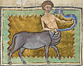 Centaure royal MS 12.jpg