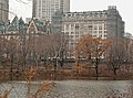 Central Park West in the rain.jpg