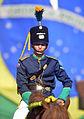 Cerimônia de comemoração dos 71 anos da Tomada de Monte Castelo (24486852013).jpg