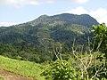 Cerro Saslaycito, vista desde Martha Lorena. - panoramio.jpg