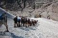 Cestou na vrchol Zugspitze - fronta na ferratu na ledovci - panoramio.jpg