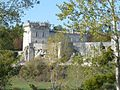 Chateau tranchade5.JPG