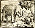 Chauveau - Fables de La Fontaine - 12-21. L'Éléphant et le Singe de Jupiter.jpg