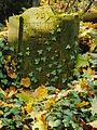Chenstochov ------- Jewish Cemetery of Czestochowa ------- 117.JPG
