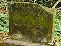 Chenstochov ------- Jewish Cemetery of Czestochowa ------- 82.JPG