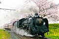 Chichibu Railway Paleo Express 2012.jpg