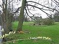 Chiddingstone Castle - geograph.org.uk - 151581.jpg