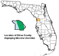 Citrus County Florida exploding 500px.png