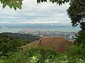 City View from Penang Hill - George Town - Penang - Malaysia - 02 (34644293354).jpg