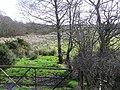 Cloghfin Townland - geograph.org.uk - 1200351.jpg