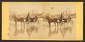 Coach on beach, and houses in the distance, from Robert N. Dennis collection of stereoscopic views 3.png