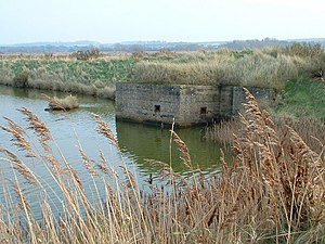 Titchwell Marsh - Remains of Second World War coastal defences