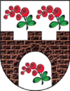 Coat of Arms of Šarkaŭščyna.png